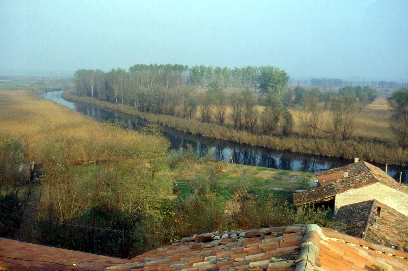 fotografia dall'alto di un fiume che scorre fra gli alberi